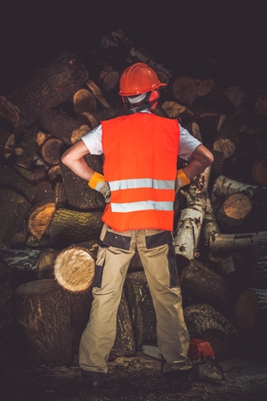 wood cutter: Firewood Seasonal Preparation Job Well Done. Satisfied Men with Wood Cutter.