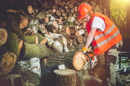 energy work: Firewood Logs Preparing. Cutting Wood Logs For Hard Winter Season. Stock Photo