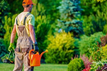 paysagiste: Jardinier et son jardin d'emploi Pour Do. Caucasien Paysagiste professionnel.