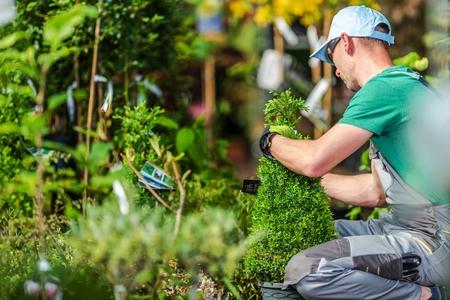 Tuinplanten kiezen. Professionele Landscaper Proberen om juiste planten te kiezen voor zijn tuinproject. Tuinwinkel Winkelen.