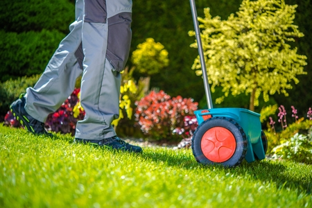 Grass Sowing in the Garden. Gardner with Small Sowing Dispenser.