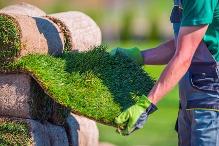 Natural Grass Turf Check Before Installation in a Garden. Archivio Fotografico