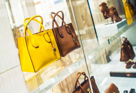 Luxury Purses and Shoes Shopping. Luxury Goods Concept Photo. Store Display.