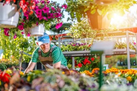 Fleuriste caucasien dans les années 30 dans la boutique Garden. Thème de jardinage et aménagement paysager.
