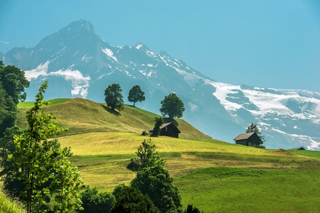 Scenic Swiss Landscape with Wooden Cabins. Jungfrau Region, Switzerland