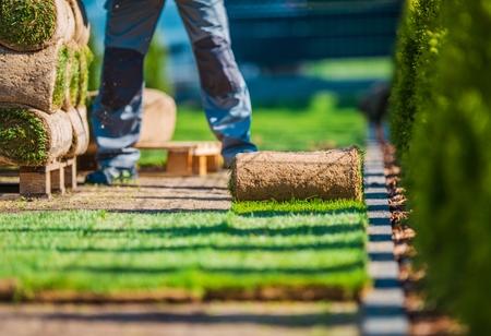 paysagiste: Installation naturelle de pelouse herbeuse. Grass Turfs et le jardinier professionnel dans le jardin.