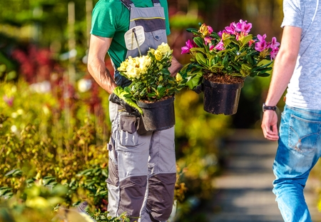 Flowers Sale Industry. Garden Store Worker Showing Some Flowering Plants to His Client. Landscaping and Gardening Theme. Stock Photo