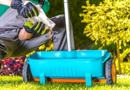 Lawn Spring Fertilization. Caucasian Gardener Resupply His Fertilization Tool. Fertilize Turf in Late Spring Standard-Bild