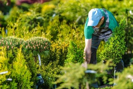 Caucasian Gardener Buying New Plants in His Favorite Garden Store.