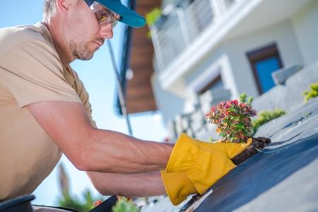Building New Backyard Garden. Caucasian Men Planting New Plants During Sunny Spring Day. Reklamní fotografie