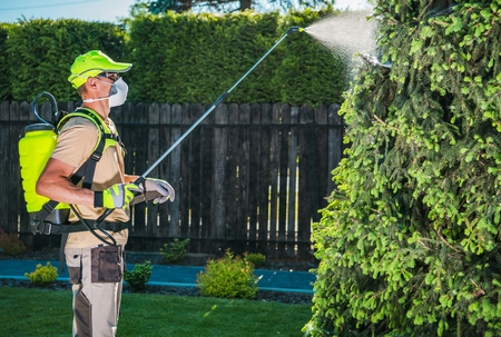 Garden Insecticide by Spraying. Caucasian Worker in His 30s Spraying Garden Trees Using Professional Equipment to Kill Insects. Reklamní fotografie