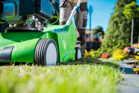 Lawn Care Machinery. Gasoline Dethatcher Pushing By Professional Gardener. Lawn Scarifier Theme.