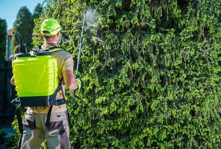 Caucasian Gardener with Professional Insecticide Garden Equipment Spraying Trees. Reklamní fotografie