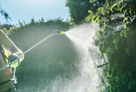 Gardener Insecticide Job. Caucasian Garden Worker with Spraying Equipment.