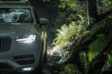Off Road Driving at Night. Large Modern SUV in the Forest. All Wheel Drive Vehicle.