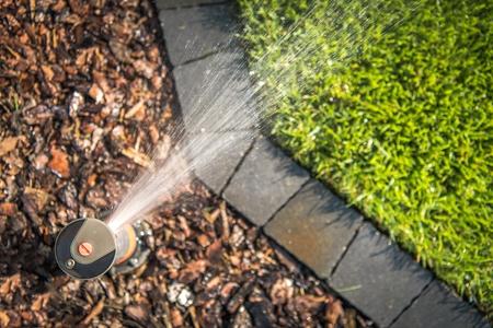 Garden Underground Sprinklers System at Work. Top View Photo.