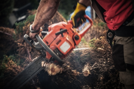 Tree Roots Removal Using Gasoline Chainsaw. Worker with Power Tool Cutting Roots Elements. Dynamic Motion Blurs. Reklamní fotografie