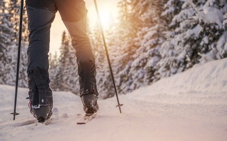 Cross Country Skiing Winter Sport Concept. Ski and Legs Closeup. Stock Photo