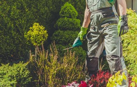 Garden Spring Time Trimming Job. Caucasian Gardener with Electric Trimmer. Reklamní fotografie