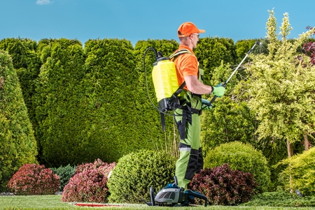 Caucasian Gardener and Garden Plants Insecticide Work. Spring Landscape Maintenance.