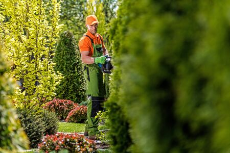 Hedge Trimming Work. Professional Gardener with Gasoline Hedge Trimmer in a Garden.