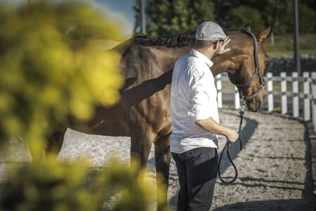 Caucasian Horse Owner in His 30s and the Equestrian Facility. Horse Passionate. Фото со стока