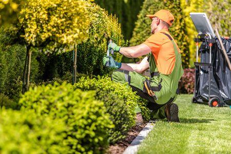 Caucasian Garden Worker in His 30s Trimming Plants Using Large Scissors. Imagens