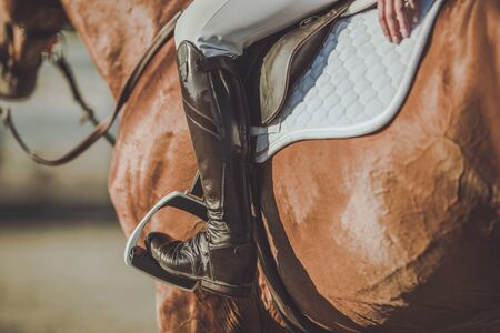 Horse Riding Stirrups and Shoes. Equestrian Accessories and Equipment. Closeup Photo. Stock Photo