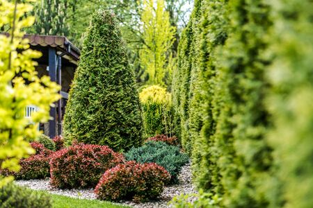 Hot Summer Day in the Beautiful Backyard Garden. Imagens