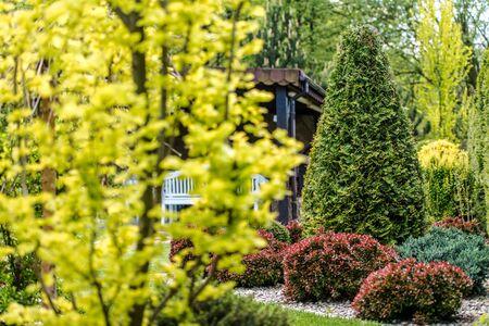 Backyard Garden Plants. Gardening Industry Theme.