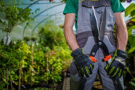 Greenhouse Trimming Job. Caucasian Garden Store Worker with Large Scissors in Hands. Agriculture Industry Theme.