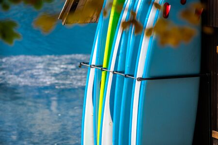 Paddle Boards Rental Business. Water Sports Equipment.