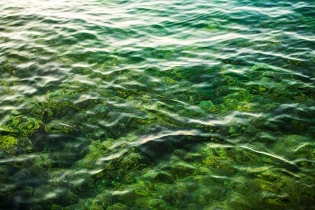 Crystal Clear Lake Water. Nature Details Photo Background.