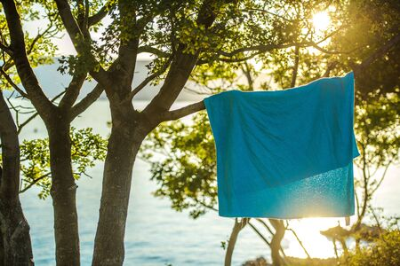 Wet Towel on a Tree Branch. Summer Vacation at the Sea Concept.