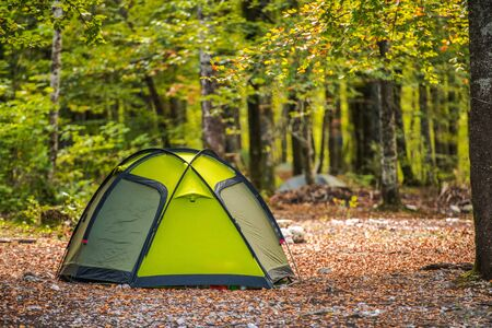 Scenic Forest Campsite and the Modern Green Igloo Style Tent. Recreational and Travel Theme.
