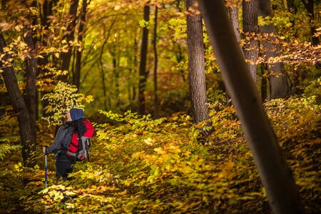 Fall Time Backpacking in a Forest. Caucasian Men in His 30s on a Trailhead Enjoying the Nature.