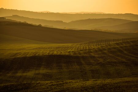 Tuscany Region of the Italy. Rural Farmlands Agriculture Landscape.