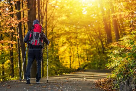 Fall Time Forest Trekking. Outdoor Recreation Theme. Caucasian Men with Backpack and Hiking Poles.