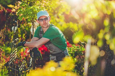 Gardener in His 30s Inside His Own Garden During Warm Sunny Day. Caucasian Men. Standard-Bild