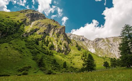 Beautiful Summer Day In Austrian Alps With Blue Sky White Clouds And Large Green Meadow.  Stok Fotoğraf