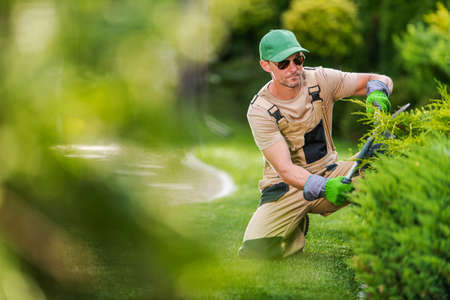 Caucasian Garden Worker in His 40s Trimming Decorative Garden Plants Using Professional Cutting Tools. Landscaping and Gardening Industry Theme.