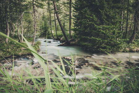Scenic Woodland Place and the River. Small Mountain River Creek. Nature Theme.