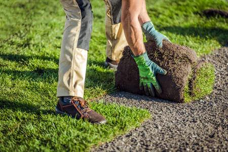 Caucasian Landscaping Worker and Natural Grass Turfs Installation Inside Garden. New Grass Lawn.