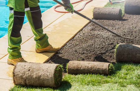 Men with Rakes Replacing Old Grass Near Outdoor Swimming Pool. Caucasian Landscaping Worker Installing New Fresh Natural Grass Turfs. Reklamní fotografie