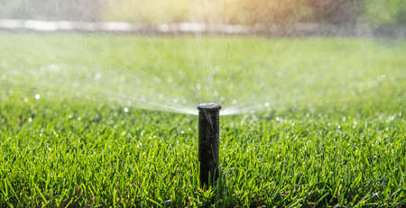 Automatic garden sprinkler watering the grass