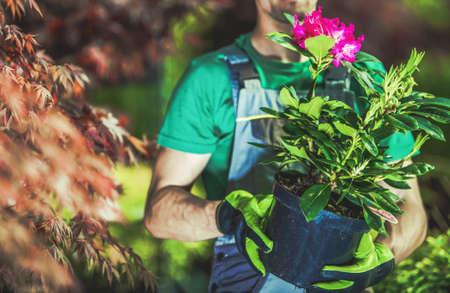 Caucasian Gardener in His 30s Buying Flowering Plant in a Pot. Planting New Flowers in Backyard Garden.