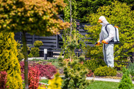 Fungicides of Backyard Garden Plants by Professional Garden Worker Wearing Protection Suit. Landscaping and Gardening Industry.