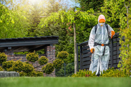 Professional Gardener Working in Protection Suite Spraying Plants. Performing Insecticide and Fungicide. Landscaping Industry Theme.