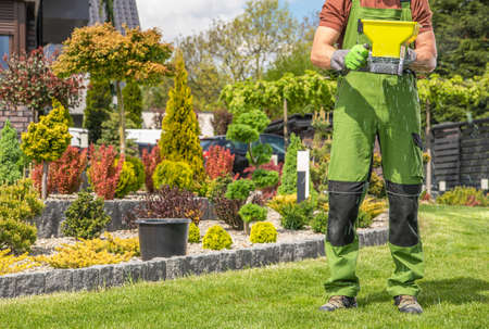 Caucasian Garden Worker in His 40s with Hand Held Seeder Walking Along Backyard Grass Lawn and Distributing Fertilizer.