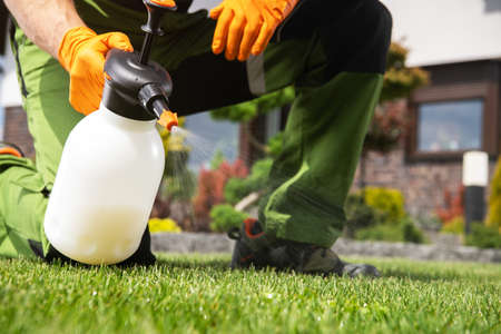 Caucasian Men Fighting Grass Lawn Weeds by Spraying Chemicals. Фото со стока